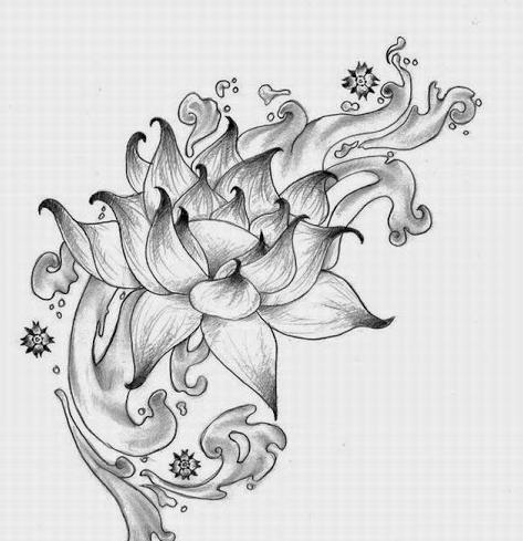 ảnh vẽ hoa sen cách điệu nghệ thuật bằng bút chì