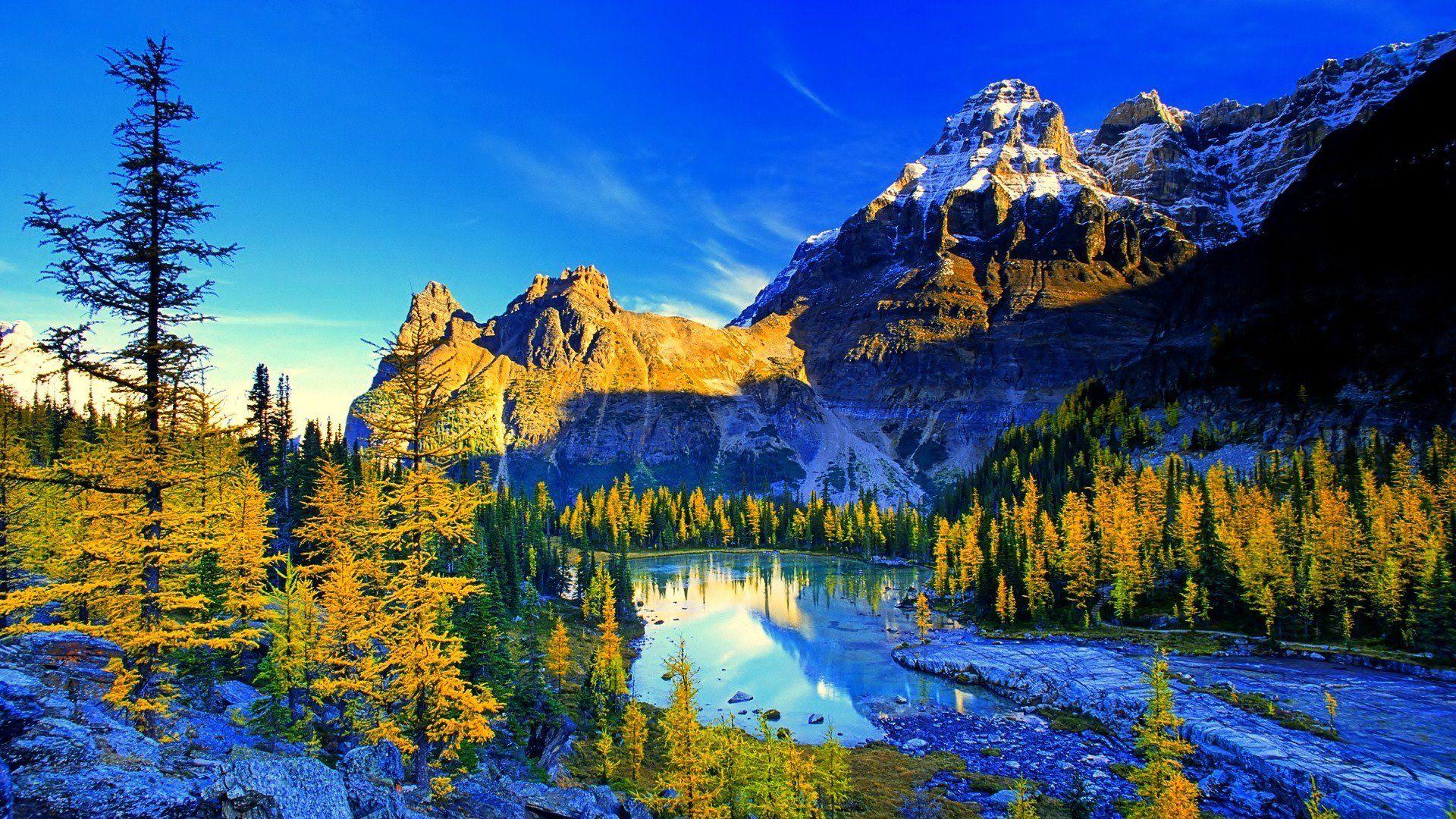cảnh đẹp thiên nhiên như tranh vẽ