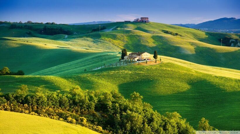 hình ảnh đẹp của đồng cỏ buổi sớm tại italia