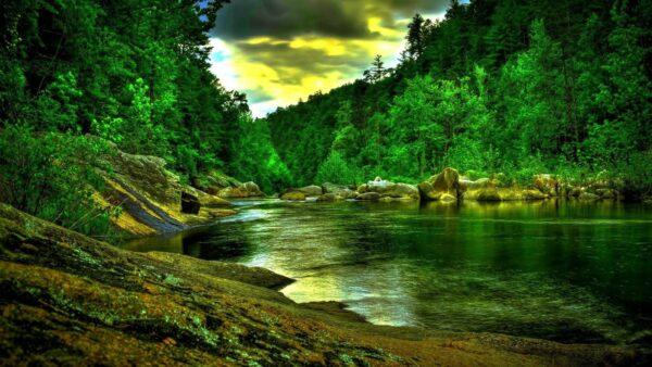 hình ảnh đẹp thiên nhiên (4)
