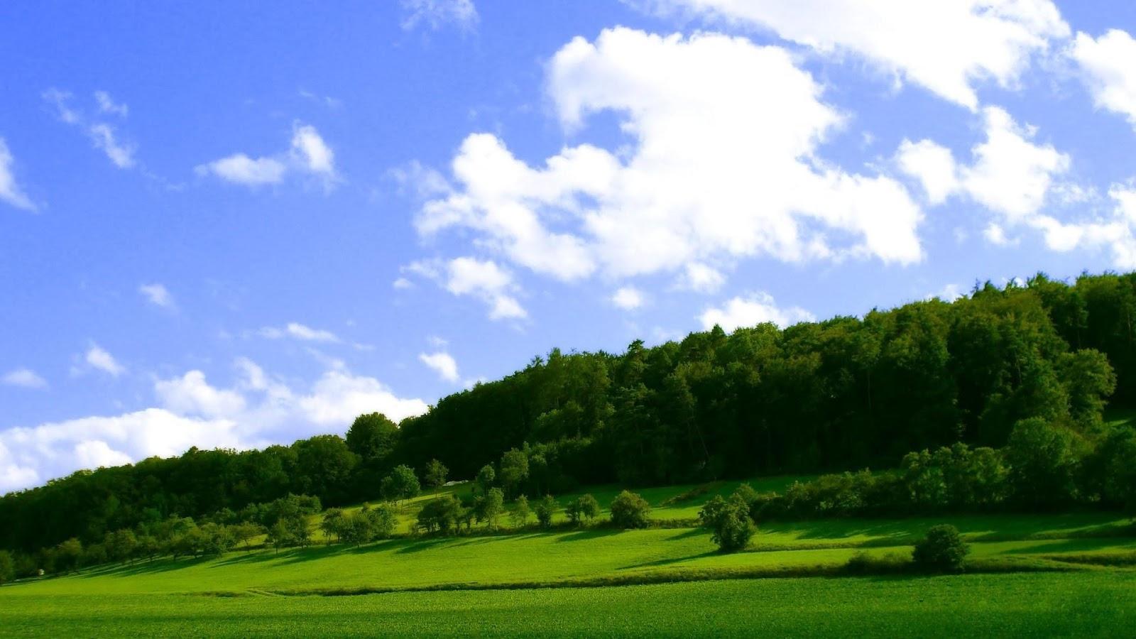 hình ảnh thiên nhiên phong cảnh đẹp (7)