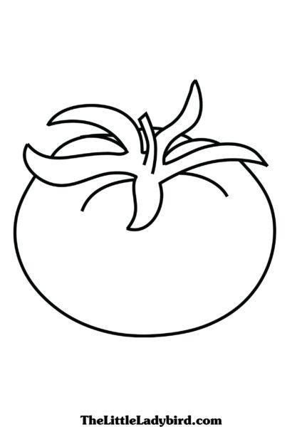hình tập tô màu quả cà chua đơn giản đẹp cho bé
