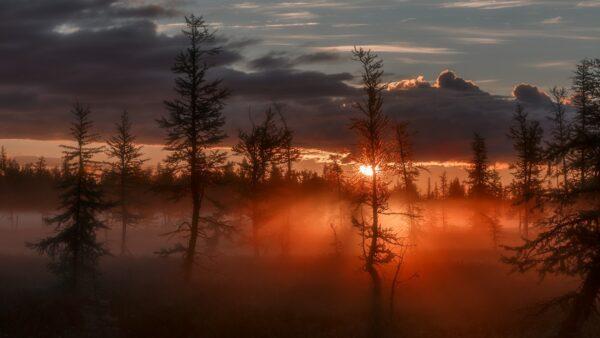 tải ảnh thiên nhiên đẹp (4)