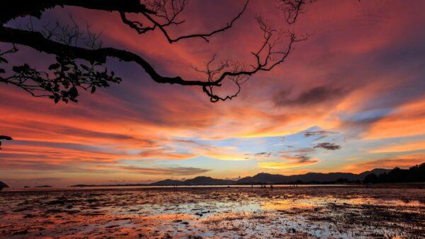 top hình ảnh thiên nhiên đẹp nhất thế giới (12)