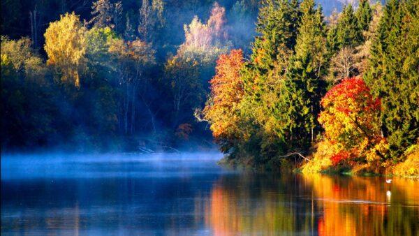 top hình ảnh thiên nhiên đẹp nhất thế giới (37)