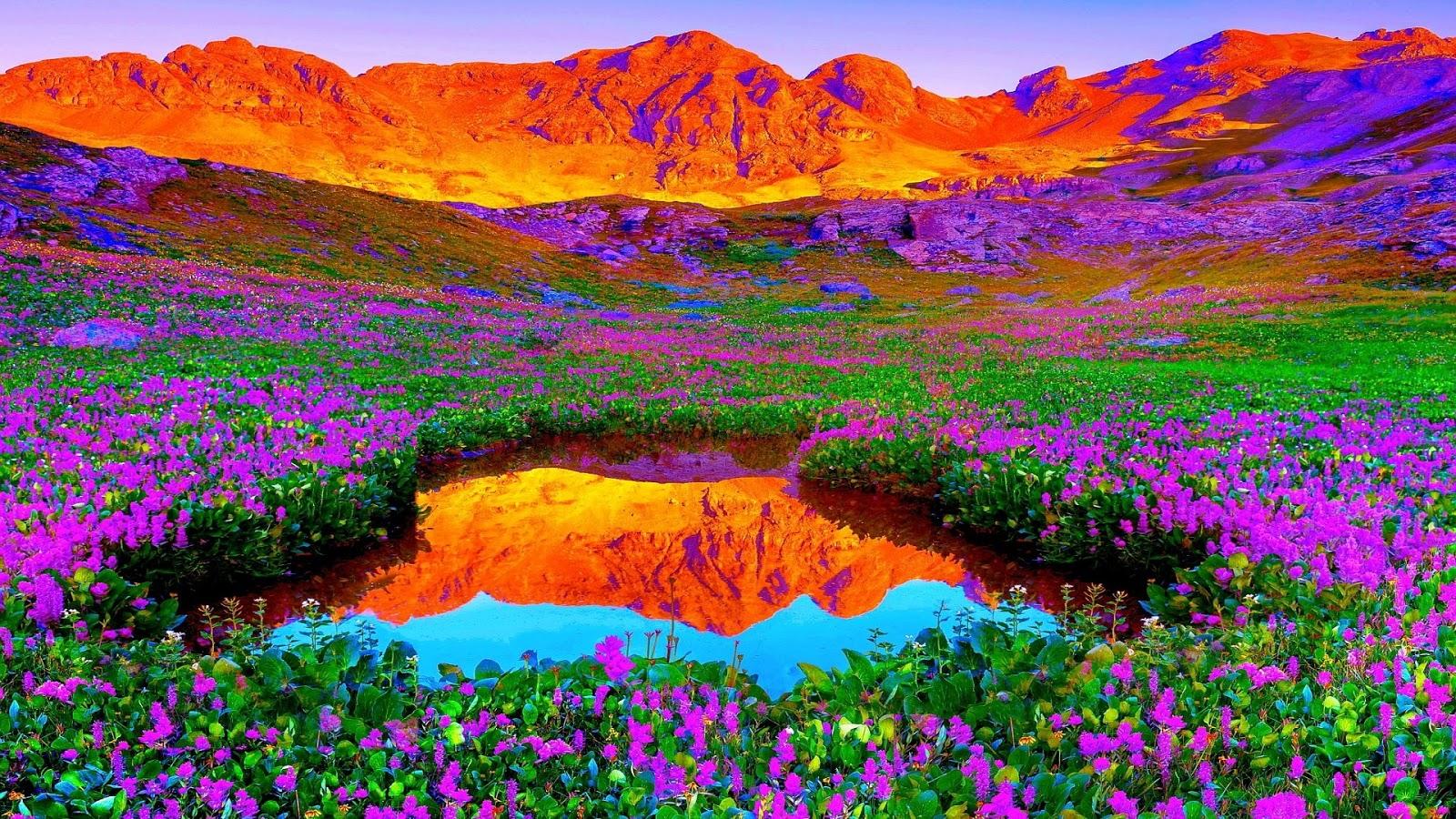 top hình ảnh thiên nhiên đẹp nhất thế giới (40)