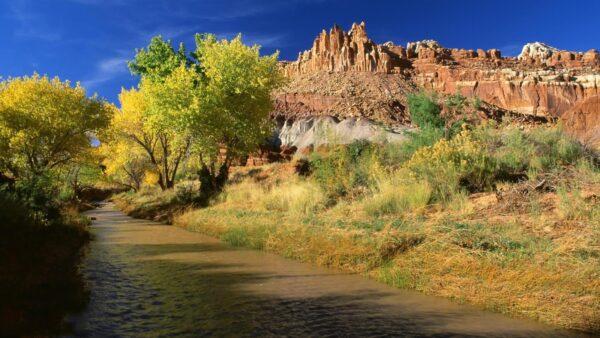 top hình ảnh thiên nhiên đẹp nhất thế giới (9)