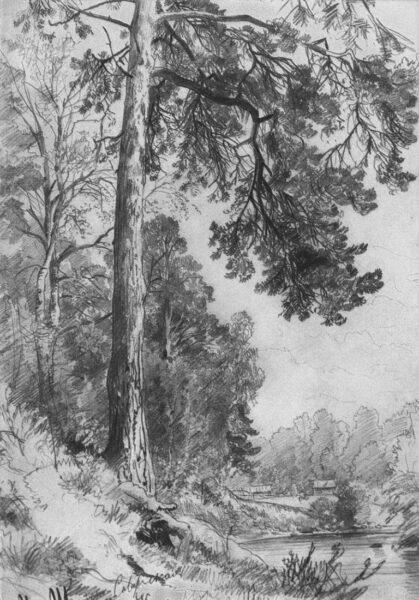 tranh ảnh vẽ bút chì phong cảnh thiên nhiên