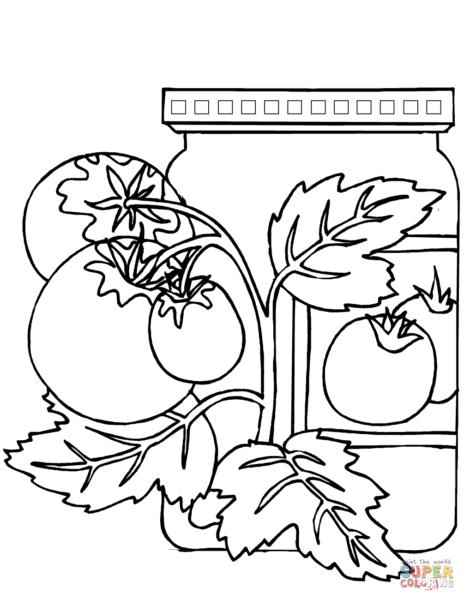 tranh tô màu những quả cà chua cho bé