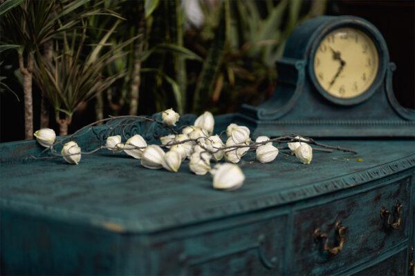ảnh Vintage phong cách cổ hoa hồng và đồng hồ trên tủ
