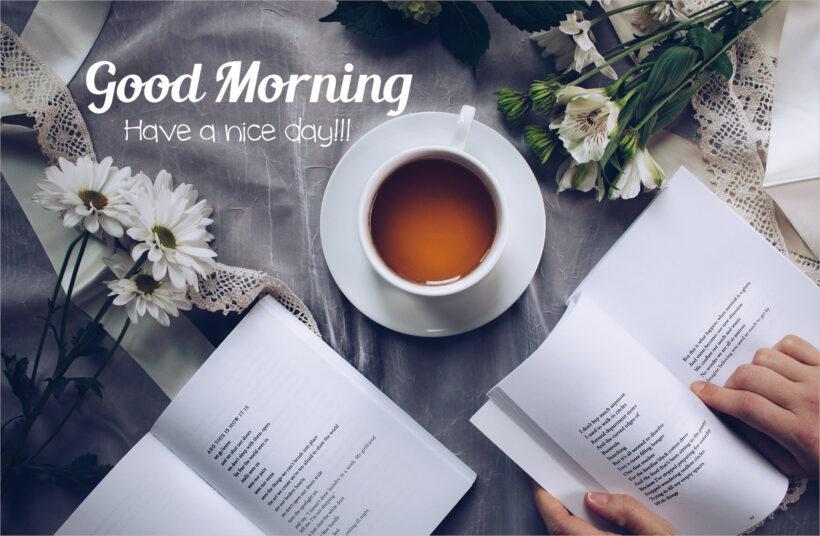 background chào buổi sáng đẹp đơn giản và chuyên nghiệp