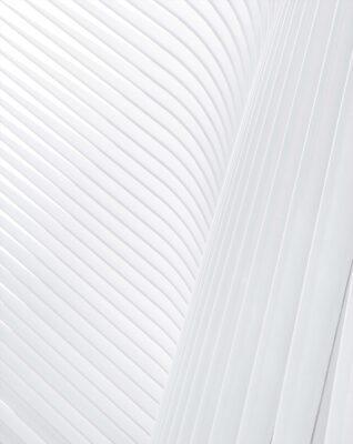 background màu trắng đẹp