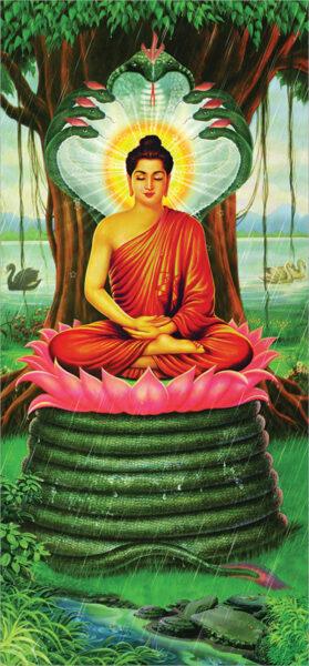 Bộ ảnh Phật Thích Ca Mô Ni từ khi đản sinh đến niết bàn (22)