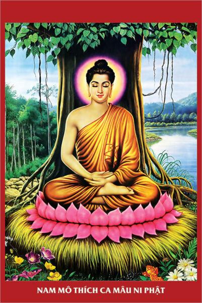 Bộ ảnh Phật Thích Ca Mô Ni từ khi đản sinh đến niết bàn (27)