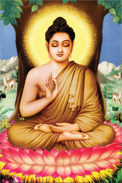 Bộ ảnh Phật Thích Ca Mô Ni từ khi đản sinh đến niết bàn (34)