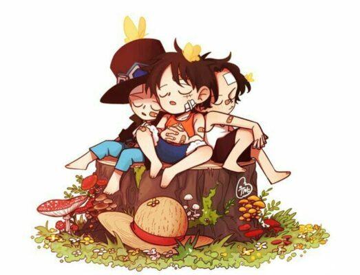 hình ảnh anime luffy one piece cute