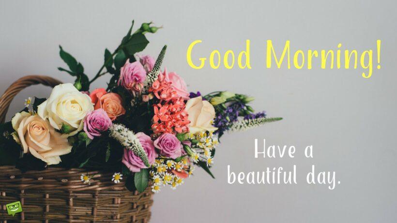 hình ảnh chúc buổi sáng và ngày mới tốt đẹp