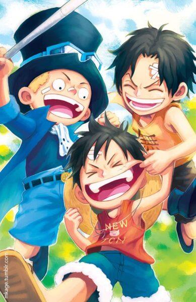 hình ảnh đẹp về Luffy cùng bạn bè