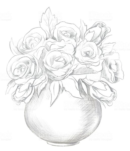 Hình ảnh hoa hồng vẽ bút chì đẹp ấn tượng nhất (14)