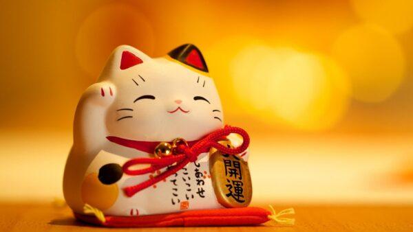 hình ảnh mèo may mắn tài lộc năm mới