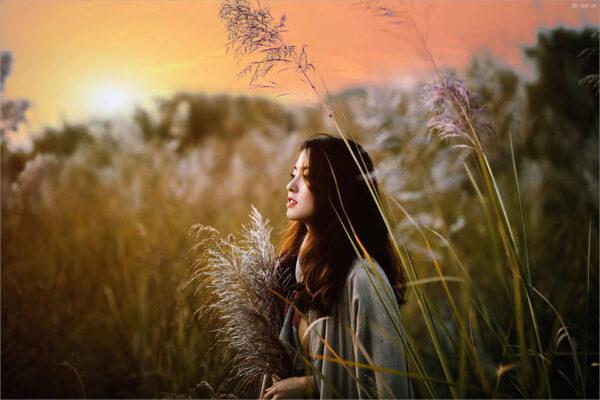 hình ảnh nắng phủ trên cay đồng cỏ và cô gái xinh