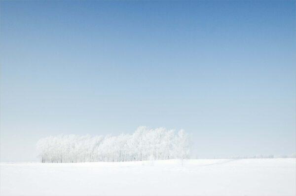 hình ảnh nền background trời tuyết trắng