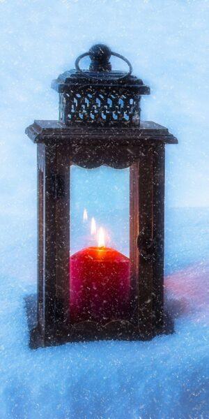 hình ảnh nền hạnh phúc trong cái rét mùa đông