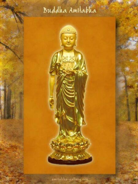 Hình ảnh Phật A Di Đà đẹp nhất (6)