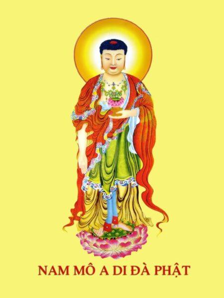 Hình ảnh Phật A Di Đà đẹp nhất (8)