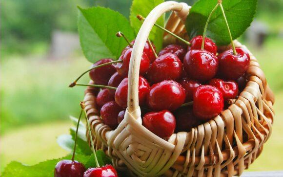 hình ảnh quả cherry đẹp nhất (1)