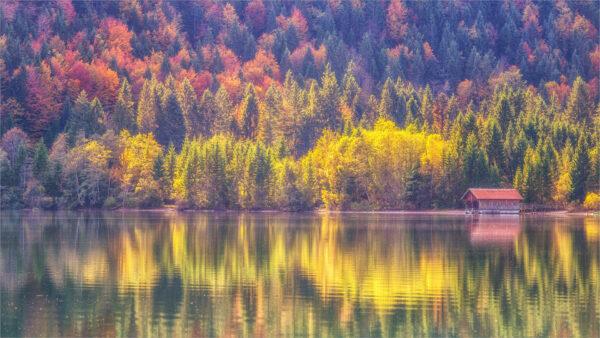 hình nền desktop máy tính mùa thu