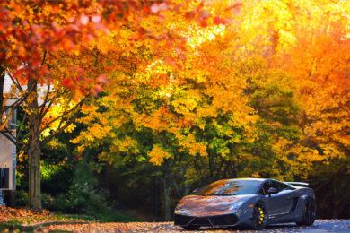 hình nền siêu xe Lamborghini Gallardo cực đẹp
