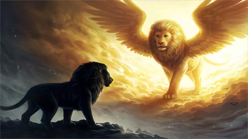 hình nền sư tử 3d cho laptop