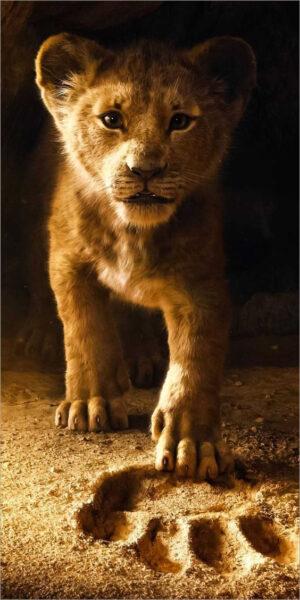 hình nền sư tử cute cho iphone