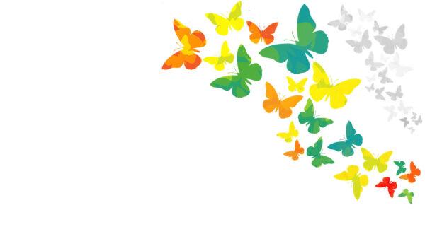 Tải background nền trắng họa tiết bướm