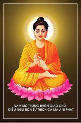Tuyển tập ảnh Phật Thích Ca Mâu Ni (13)