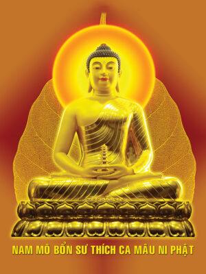 Tuyển tập ảnh Phật Thích Ca Mâu Ni (16)