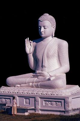 Tuyển tập ảnh Phật Thích Ca Mâu Ni (21)