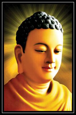 Tuyển tập ảnh Phật Thích Ca Mâu Ni (5)