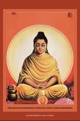 Tuyển tập ảnh Phật Thích Ca Mâu Ni (7)