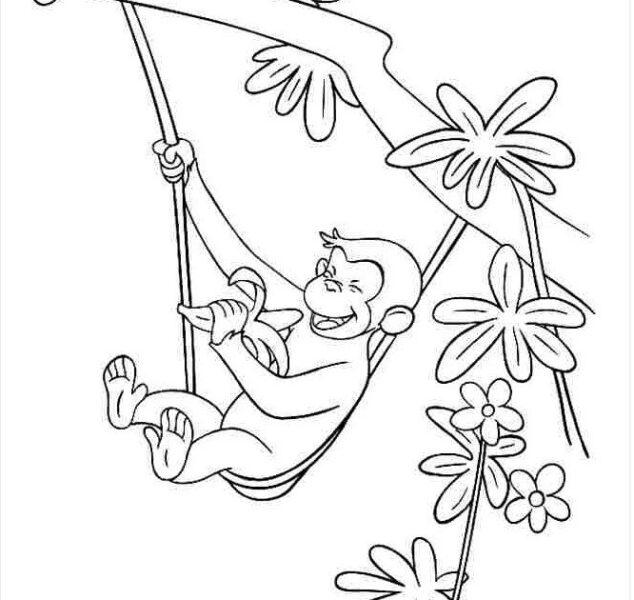 Cách vẽ con khỉ leo cây