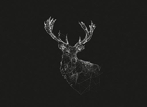 hình ảnh avatar đen trắng đẹp độc đáo