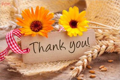hình ảnh cảm ơn đẹp ý nghĩa nhất (12)