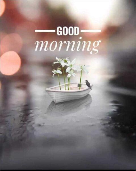 hình ảnh chào ngày mới đẹp nhất (4)