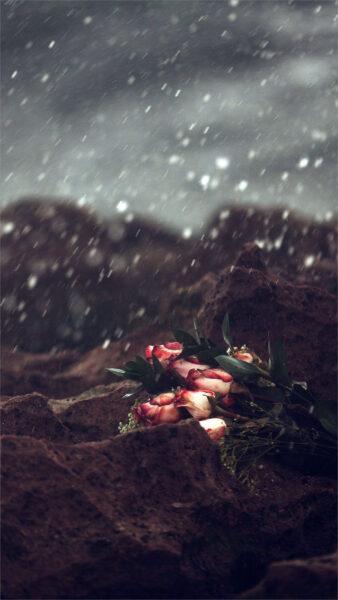 hình ảnh mưa đẹp nhất (6)