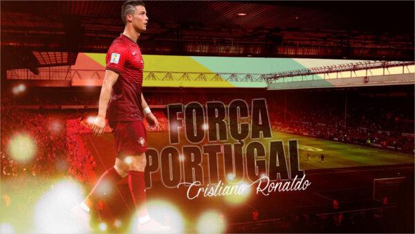 Hình ảnh Ronaldo tuyệt đẹp (5)