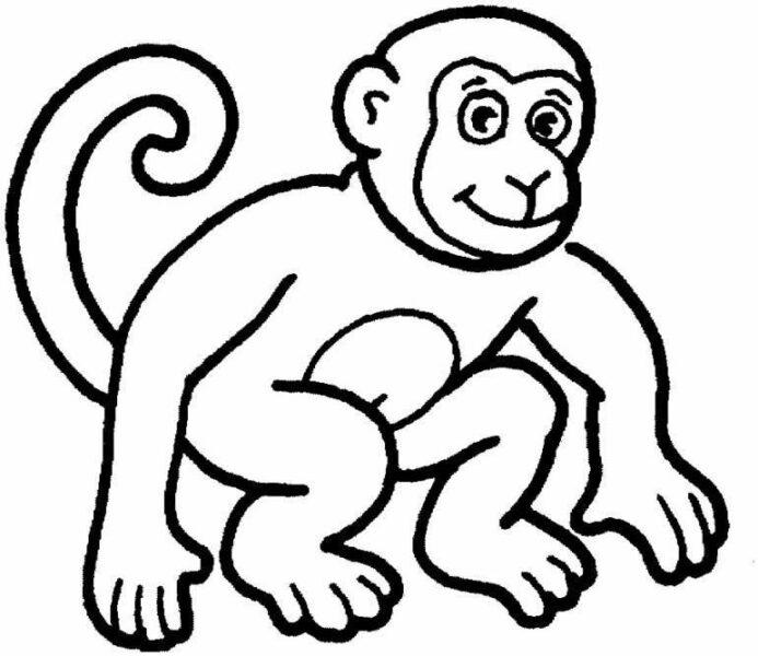 Hình con khỉ