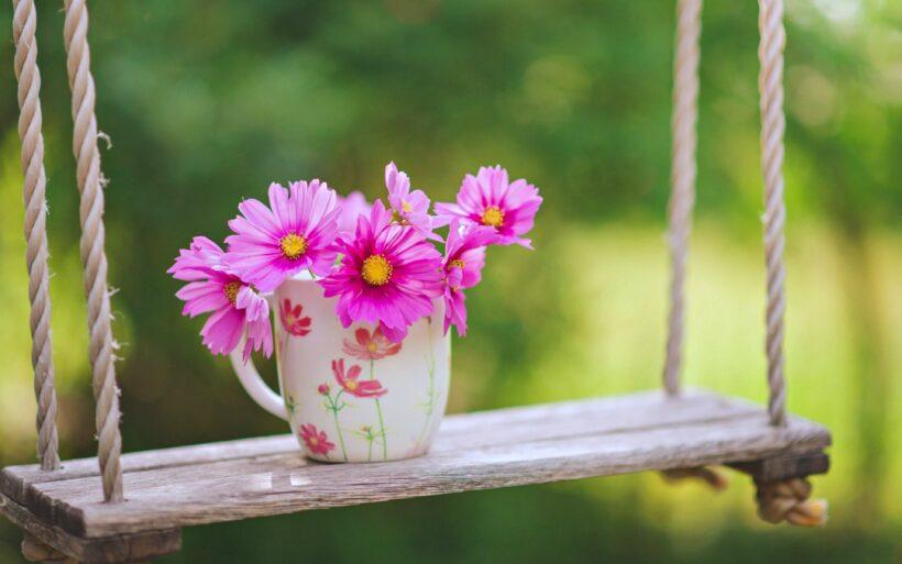 Hình nền thiên nhiên 4K hoa đẹp