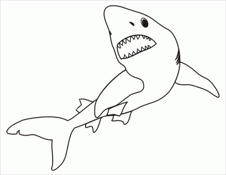 Hình tập tô con cá mập cho bé tô màu (1)