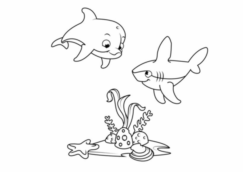Hình tập tô con cá mập cho bé tô màu (2)